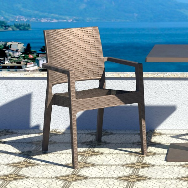 Kesler Stacking Patio Dining Chair (Set of 2) by Brayden Studio Brayden Studio