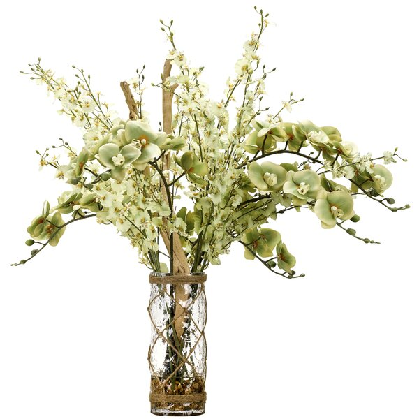 Green Phael and Dancing Orchids Floral Arrangement  in Decorative Vase by Rosecliff Heights