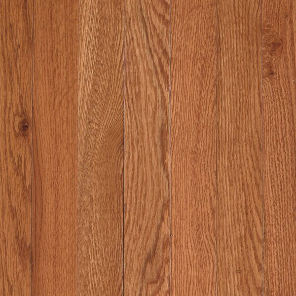Randleton 2-1/4 Solid Oak Hardwood Flooring in Butterscotch by Mohawk Flooring