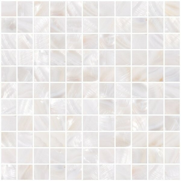 1 x 1 Shell Mosaic Tile in White
