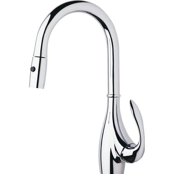 Bellefleur Single Handle Kitchen Faucet with Side Spray by Danze®
