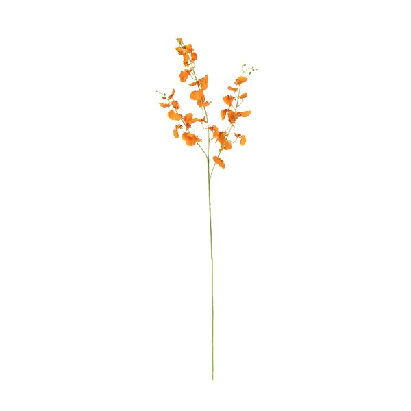 Silk Dancing Lady Orchid Stem by Charlton Home
