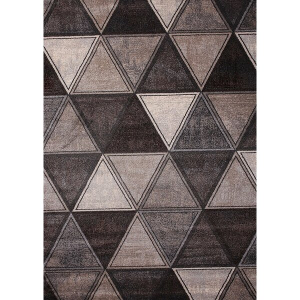 Gray/Ivory Area Rug by Chic Rugz