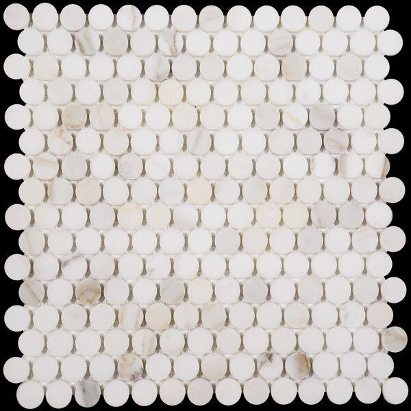 Penny Round Honed 12 x 12 Marble Mosaic Tile in Calacatta by Ephesus Stones