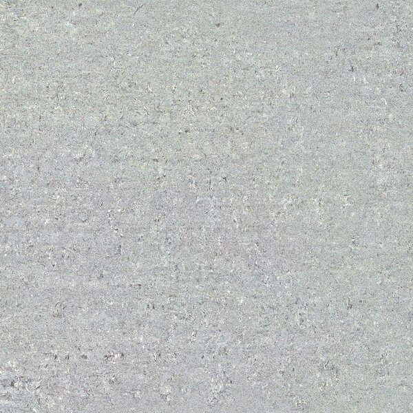 Galaxy Polished 24 x 24 Porcelain Field Tile in Gray by Multile