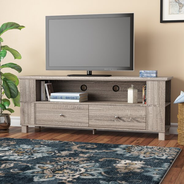 Best Reviews Ted Cabinet TV Stand for TVs up to 65 by Andover Mills