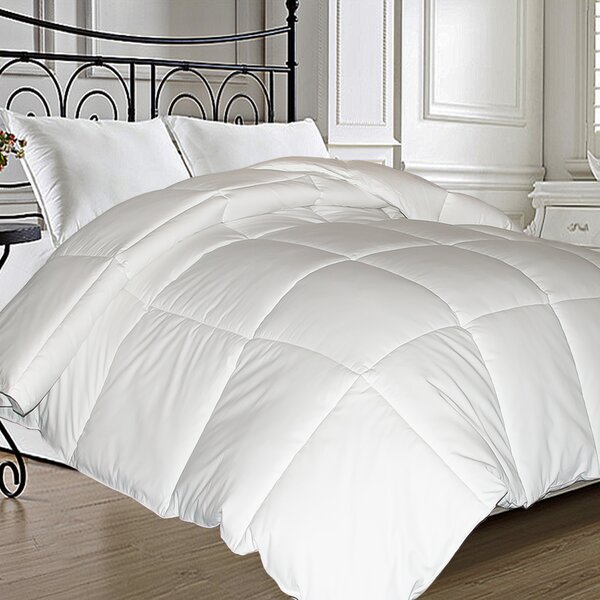 Natural Feather All Season Down Comforter by Alwyn Home