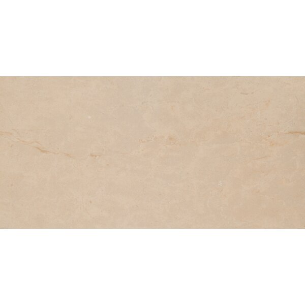 Pietra Ivory 16 x 32 Porcelain Field Tile in Off-White by MSI
