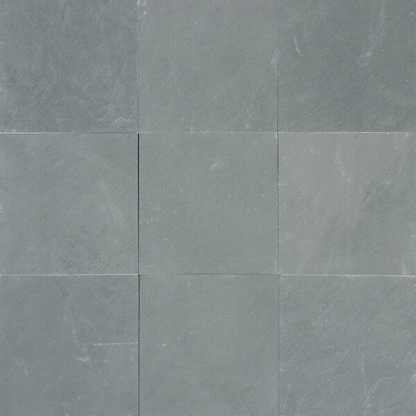 Montauk 12 x 12 Slate Field Tile in Honed Blue by MSI