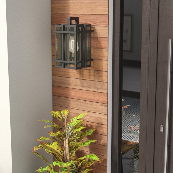 Cipolla 1-Light Outdoor Sconce by Brayden Studio
