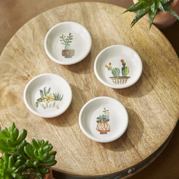 Cacti 4 Piece Appetizer Dishes by Birch Lane™