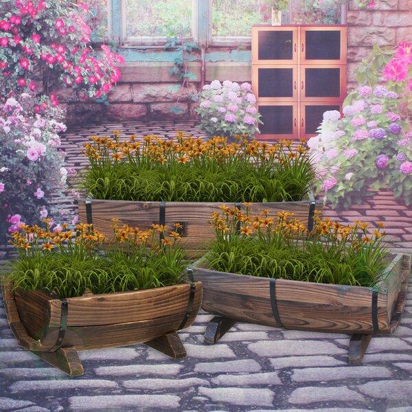 3-Piece Wood Pot Planter Set by Gardenised