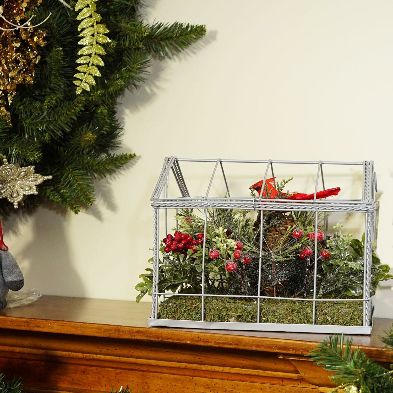 Christmas Succulent Decor.The Holiday Aisle Cardinals Desktop Succulent Plant Wayfair