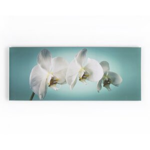 'Teal Orchid' Photographic Print on Wrapped Canvas by Zipcode Design