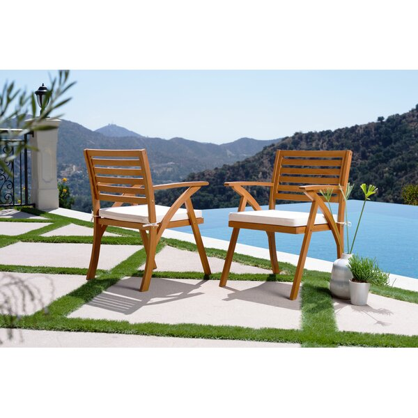 Aryanna Patio Dining Chair with Cushion (Set of 2) by Rosecliff Heights