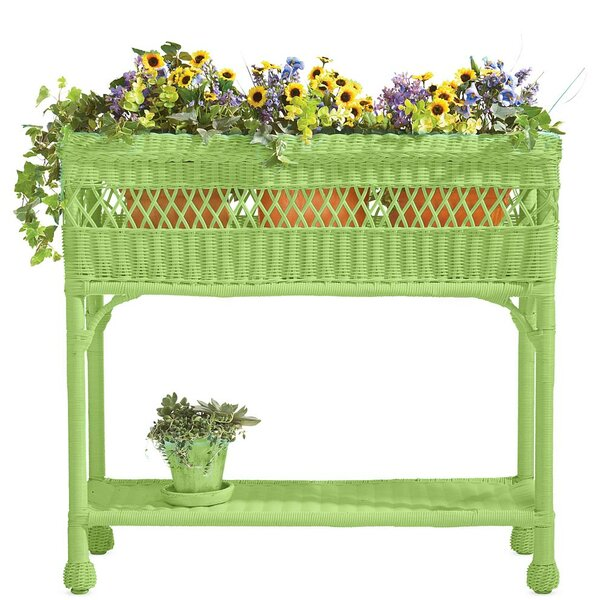 2.5 ft x 1 ft Wicker Raised Garden by Plow & Hearth