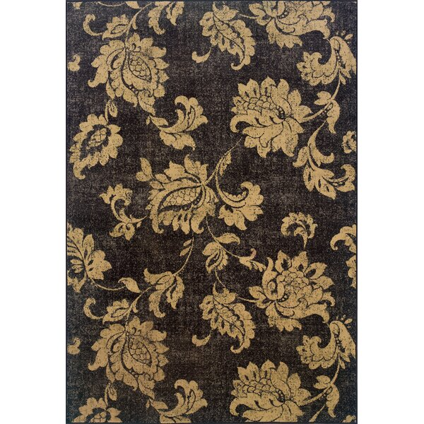 Donellan Black/Beige Area Rug by Charlton Home