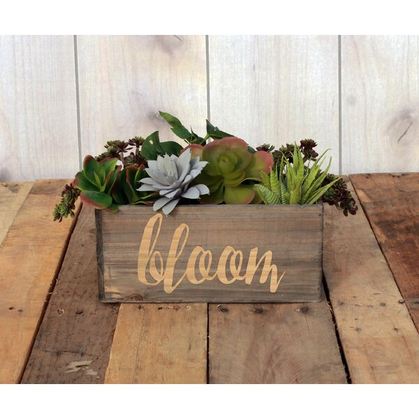 Lynton Personalized Wood Planter Box by Winston Porter