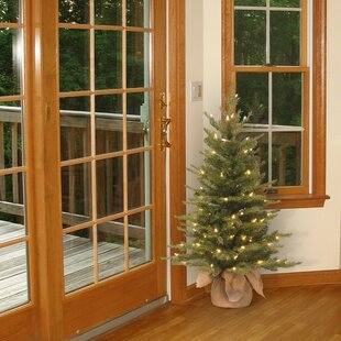 3 green spruce artificial christmas tree with 100 clear lights - Garden Ridge Christmas Decorations Outdoors