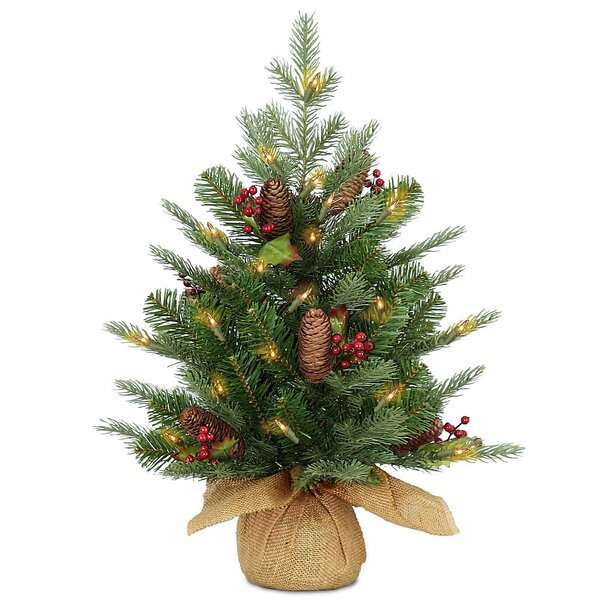 24 Green Spruce Artificial Christmas Tree with 50 LED White Lights by Three Posts