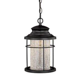 Compare Alorton 1-Light Outdoor Hanging Lantern By Red Barrel Studio