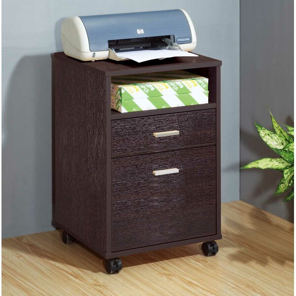 Eubank 2-Drawer Mobile Vertical Filing Cabinet by Winston Porter