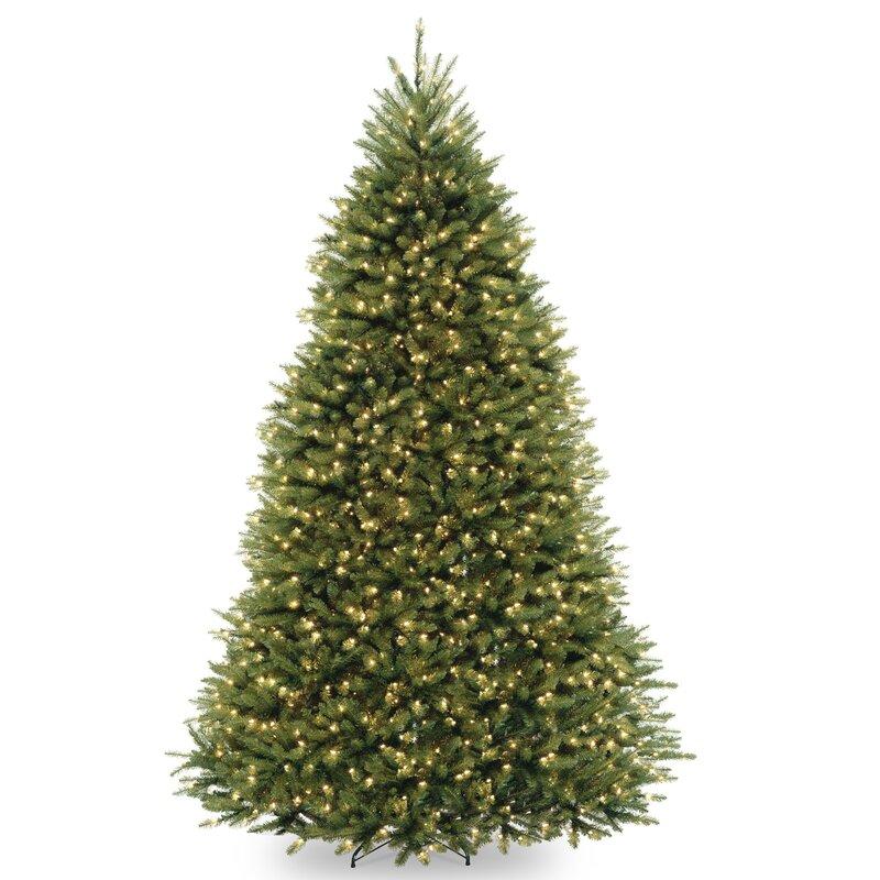 regular (full) christmas trees
