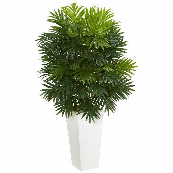 Areca Palm Plant in Tower Planter by Rosecliff Heights