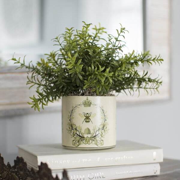 Pierre Small Leaf Feather Plant in Bee Motif Pot by Lark Manor