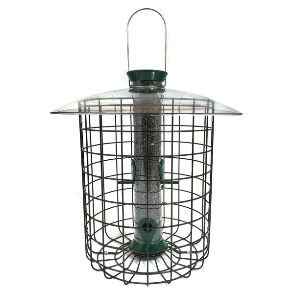 Sunflower Domed Hanging Tube Bird Feeder by Droll Yankees
