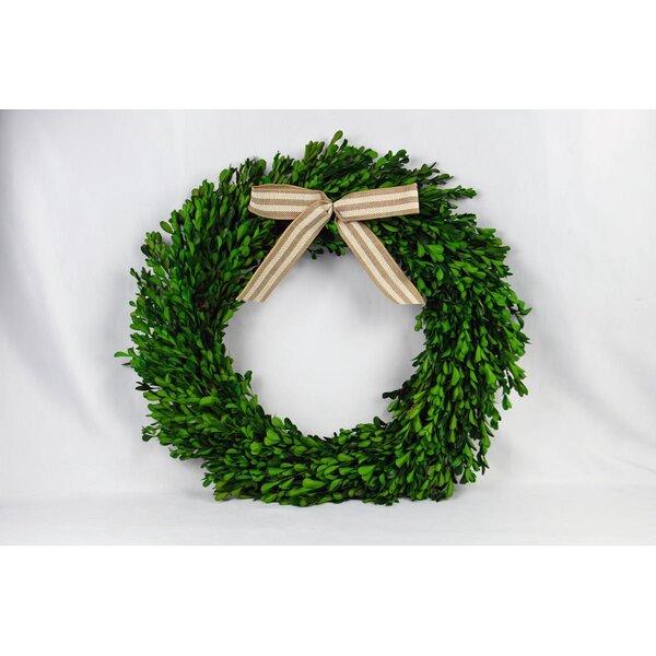 Ribbon 20 Boxwood Wreath by Gracie Oaks