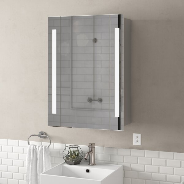 Corby 23.5 x 39.5 Surface Mount Frameless Medicine Cabinet with LED Lighting in , 3000K