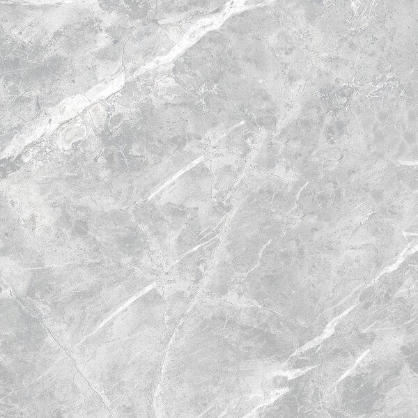 Luna Glazed 12 x 24 Porcelain Field Tile in Gray by Multile