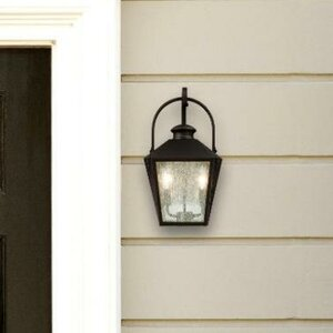 Ibarra 2-Light Outdoor Wall Lantern