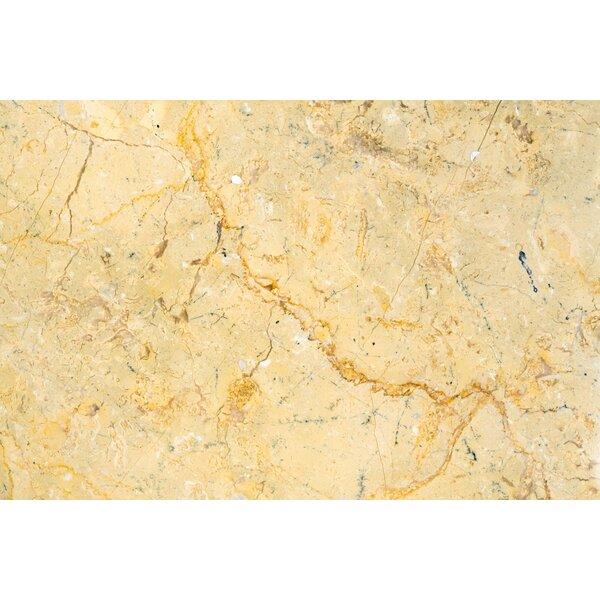 Sahara Gold Polished 24x24 Marble Field Tile