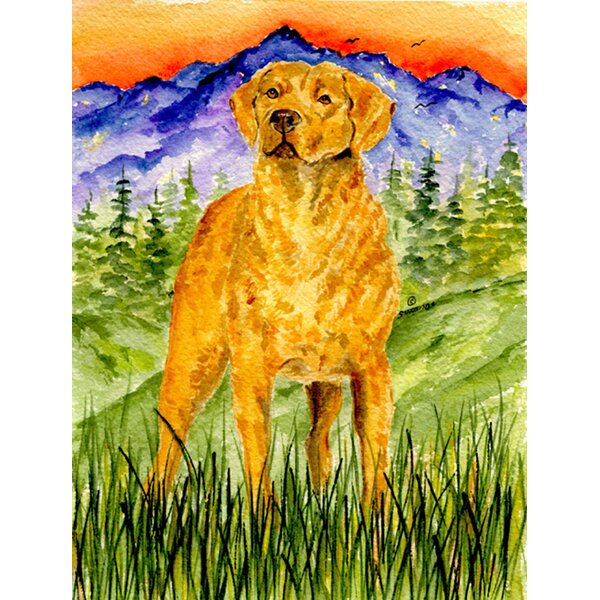 Chesapeake Bay Retriever House Vertical Flag by Caroline's Treasures