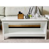 Buckhurst Coffee Table with Storage by Rosecliff Heights
