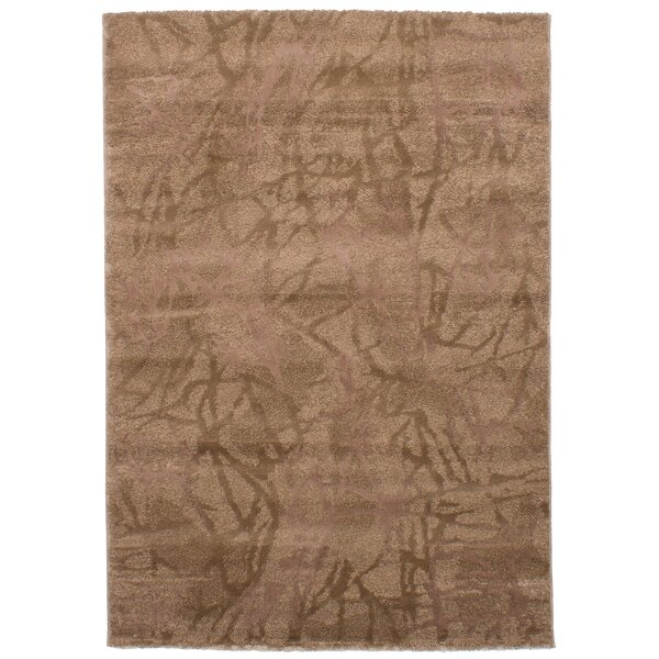Chesterton Brown Area Rug by Foundry Select