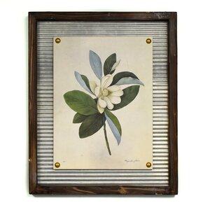 'Flowering Magnolia' Framed Graphic Art Print by Lark Manor
