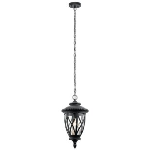 Shop for Dasie 1-Light Outdoor Hanging Lantern By Darby Home Co