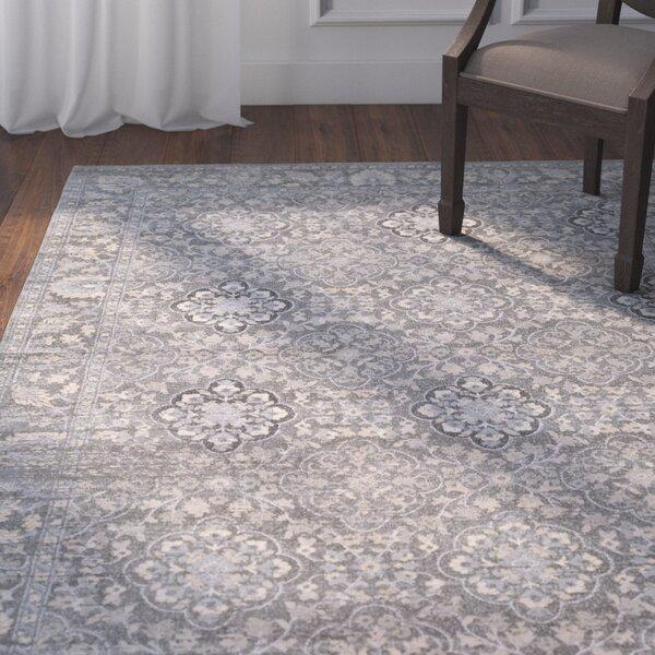 Villegas Medium Gray/Cream Area Rug by Astoria Grand