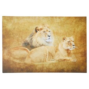 Lions Graphic Art on Canvas by World Menagerie
