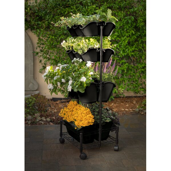 Mobile Double Frame Plastic Vertical Garden by Watex