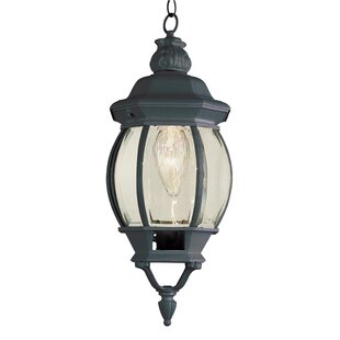 Big Save Claypool 1-Light Hanging Lantern By Astoria Grand