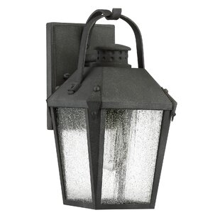 Price comparison Ellenburg 1-Light Outdoor Wall Lantern By Darby Home Co