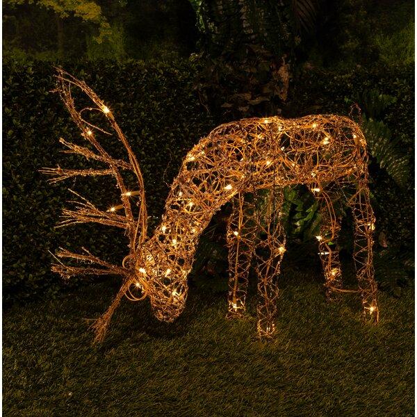 25 Grazing Rattan Reindeer with 50 Halogen Lights by Lark Manor