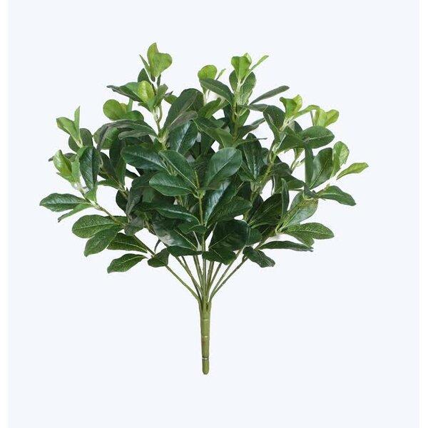 Decorative Artificial Polyscias Floral Bush by Northlight Seasonal