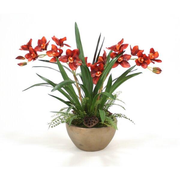Silk Cymbidium Orchids, Grass and Fern Desk Top Plant in Bowl by Distinctive Designs
