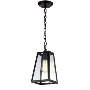 Camile 1-Light Lantern Pendant by Williston Forge