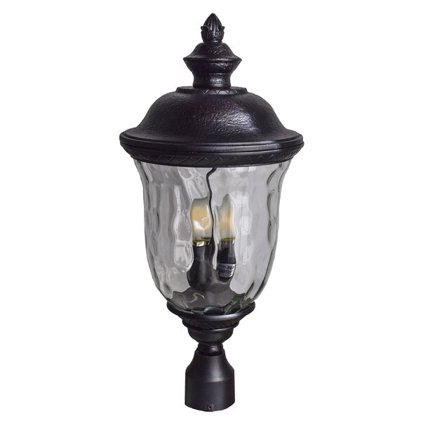 Doliya 3-Light Lantern Head by Astoria Grand
